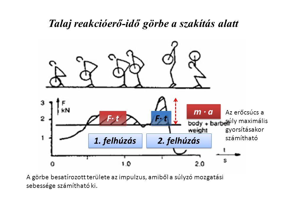 Talaj reakcióerő-idő görbe a szakítás alatt 1. felhúzás 2. felhúzás m · a F· t A görbe besatírozott területe az impulzus, amiből a súlyzó mozgatási se