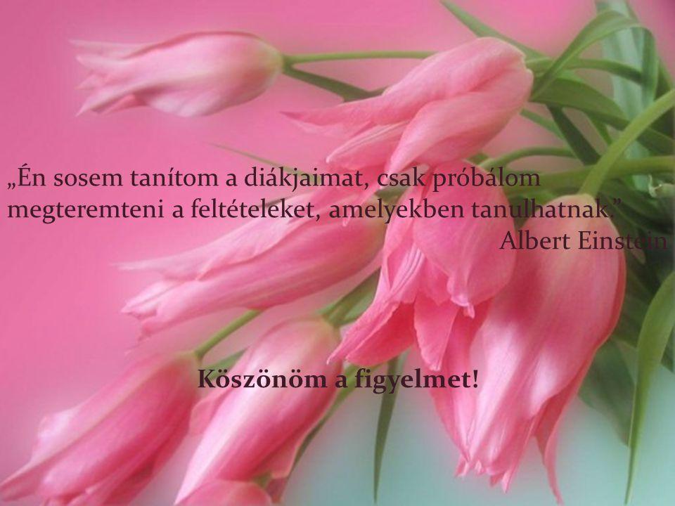 """""""Én sosem tanítom a diákjaimat, csak próbálom megteremteni a feltételeket, amelyekben tanulhatnak."""" Albert Einstein Köszönöm a figyelmet!"""