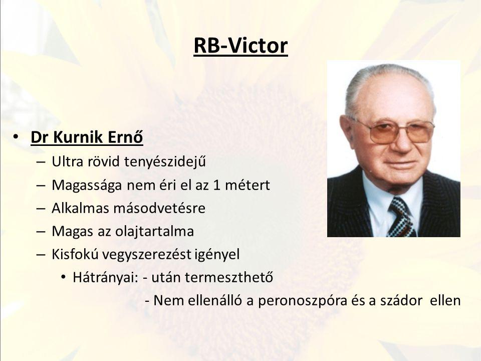 RB-Victor Dr Kurnik Ernő – Ultra rövid tenyészidejű – Magassága nem éri el az 1 métert – Alkalmas másodvetésre – Magas az olajtartalma – Kisfokú vegys