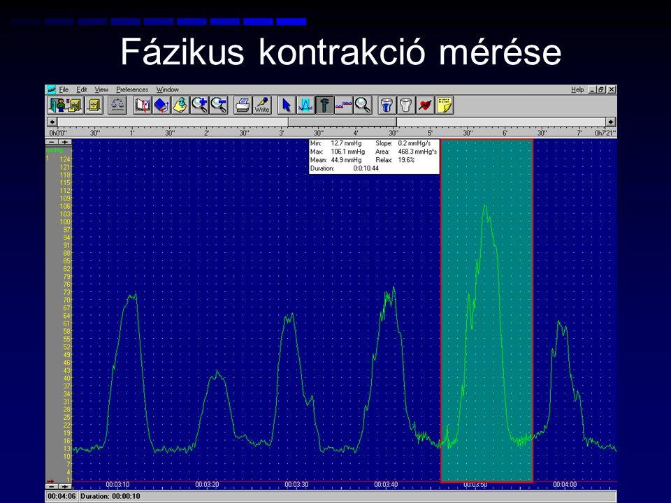 Fázikus kontrakció mérése
