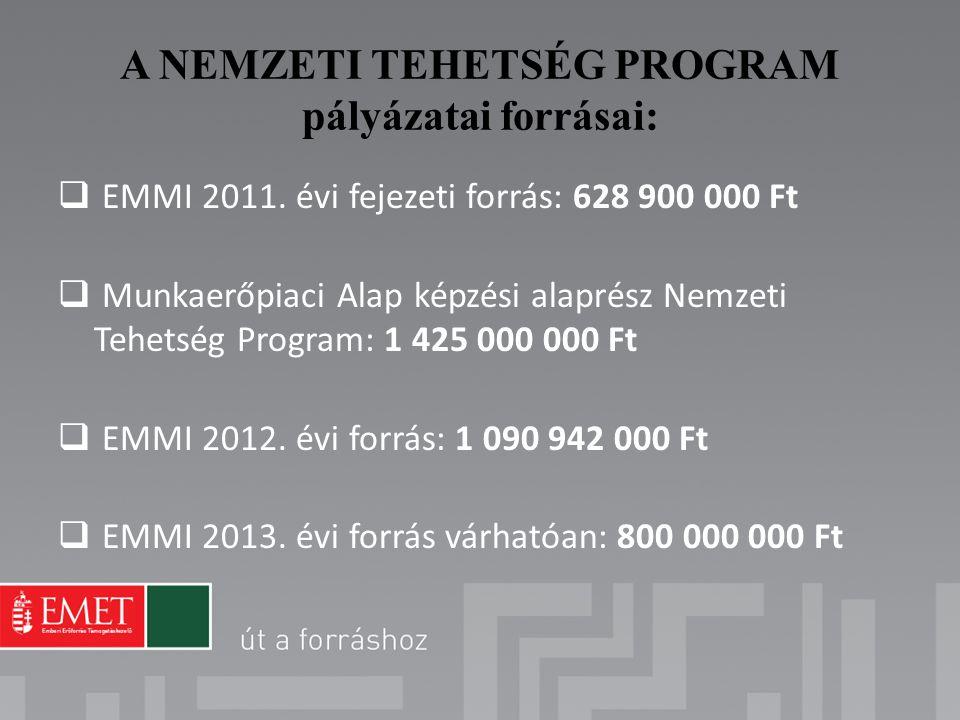 A NEMZETI TEHETSÉG PROGRAM pályázatai forrásai:  EMMI 2011. évi fejezeti forrás: 628 900 000 Ft  Munkaerőpiaci Alap képzési alaprész Nemzeti Tehetsé