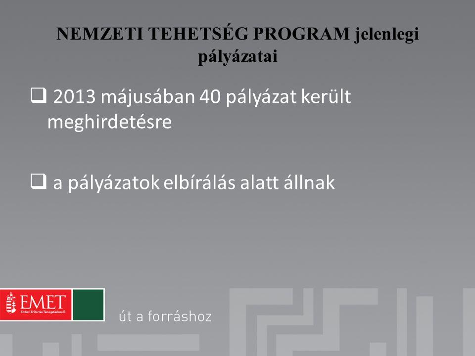 2013 májusában 40 pályázat került meghirdetésre  a pályázatok elbírálás alatt állnak NEMZETI TEHETSÉG PROGRAM jelenlegi pályázatai