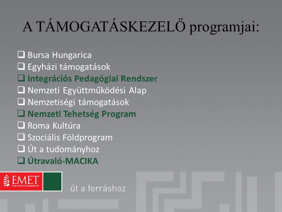 A TÁMOGATÁSKEZELŐ programjai:  Bursa Hungarica  Egyházi támogatások  Integrációs Pedagógiai Rendszer  Nemzeti Együttműködési Alap  Nemzetiségi tá