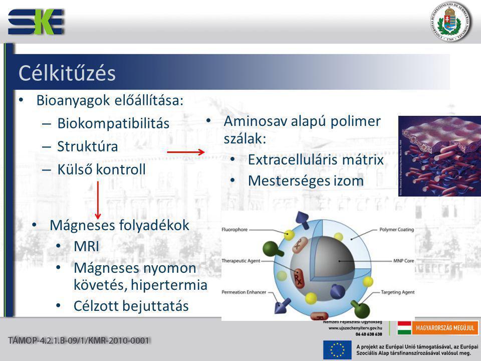 Célkitűzés Bioanyagok előállítása: – Biokompatibilitás – Struktúra – Külső kontroll Aminosav alapú polimer szálak: Extracelluláris mátrix Mesterséges izom Mágneses folyadékok MRI Mágneses nyomon követés, hipertermia Célzott bejuttatás