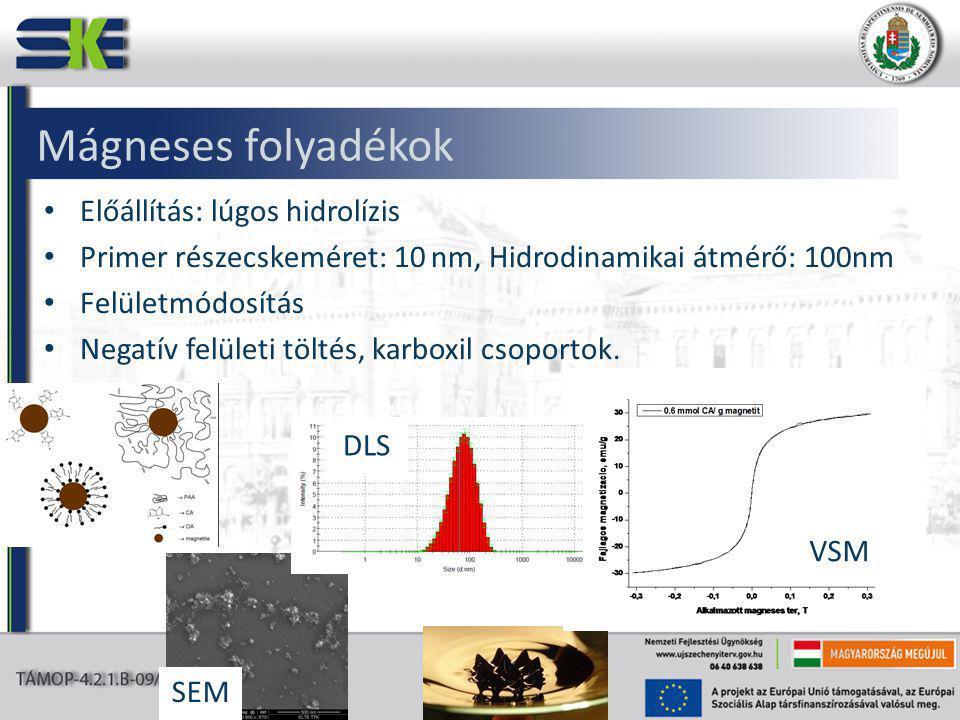 Mágneses folyadékok Előállítás: lúgos hidrolízis Primer részecskeméret: 10 nm, Hidrodinamikai átmérő: 100nm Felületmódosítás Negatív felületi töltés, karboxil csoportok.