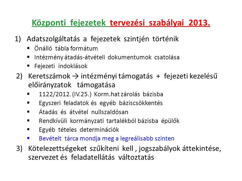 Központi fejezetek tervezési szabályai 2013. 1)Adatszolgáltatás a fejezetek szintjén történik  Önálló tábla formátum  Intézmény átadás-átvételi doku