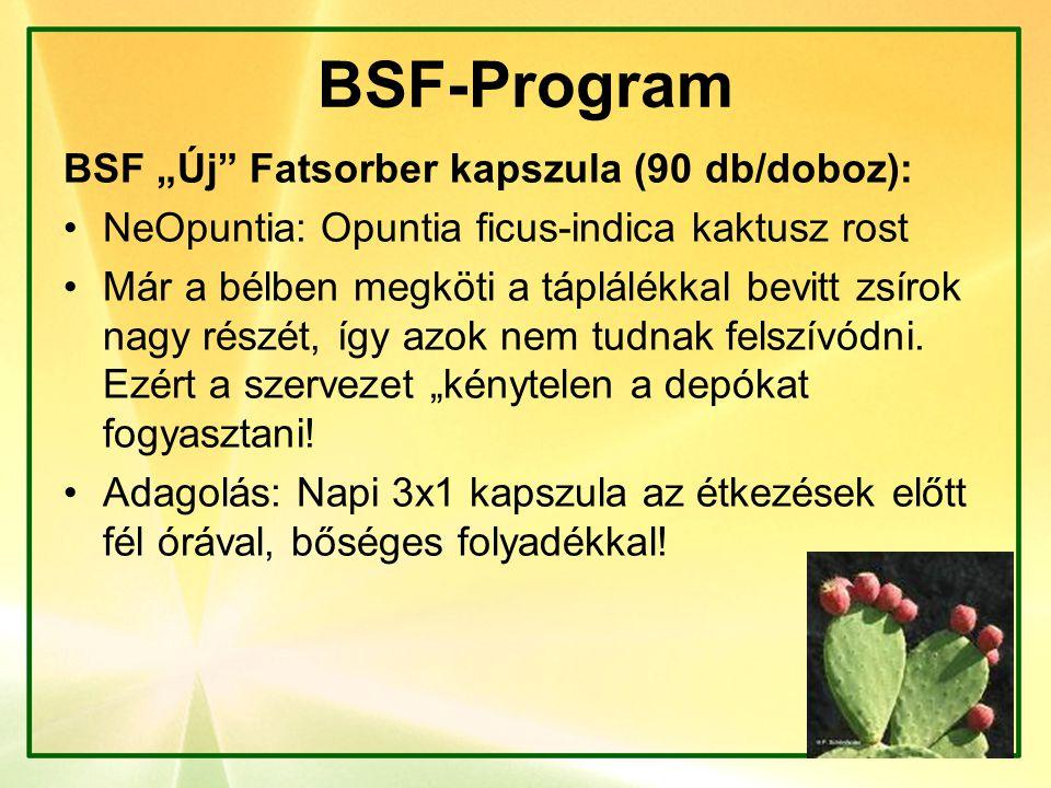 """BSF-Program BSF """"Új"""" Fatsorber kapszula (90 db/doboz): NeOpuntia: Opuntia ficus-indica kaktusz rost Már a bélben megköti a táplálékkal bevitt zsírok n"""