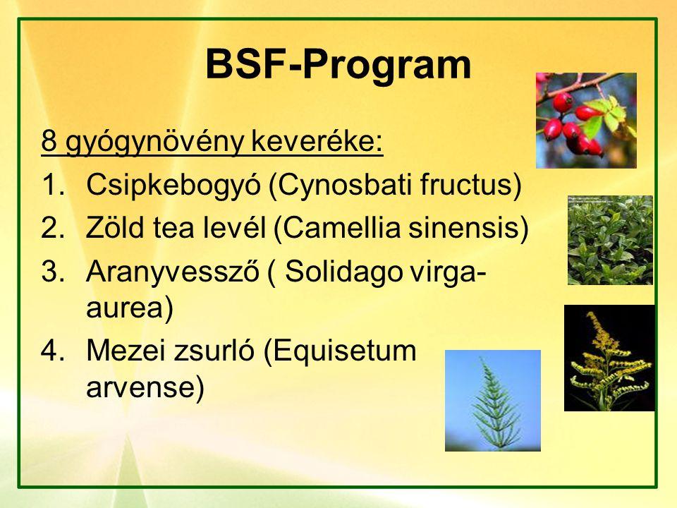 BSF-Program 8 gyógynövény keveréke: 1.Csipkebogyó (Cynosbati fructus) 2.Zöld tea levél (Camellia sinensis) 3.Aranyvessző ( Solidago virga- aurea) 4.Me