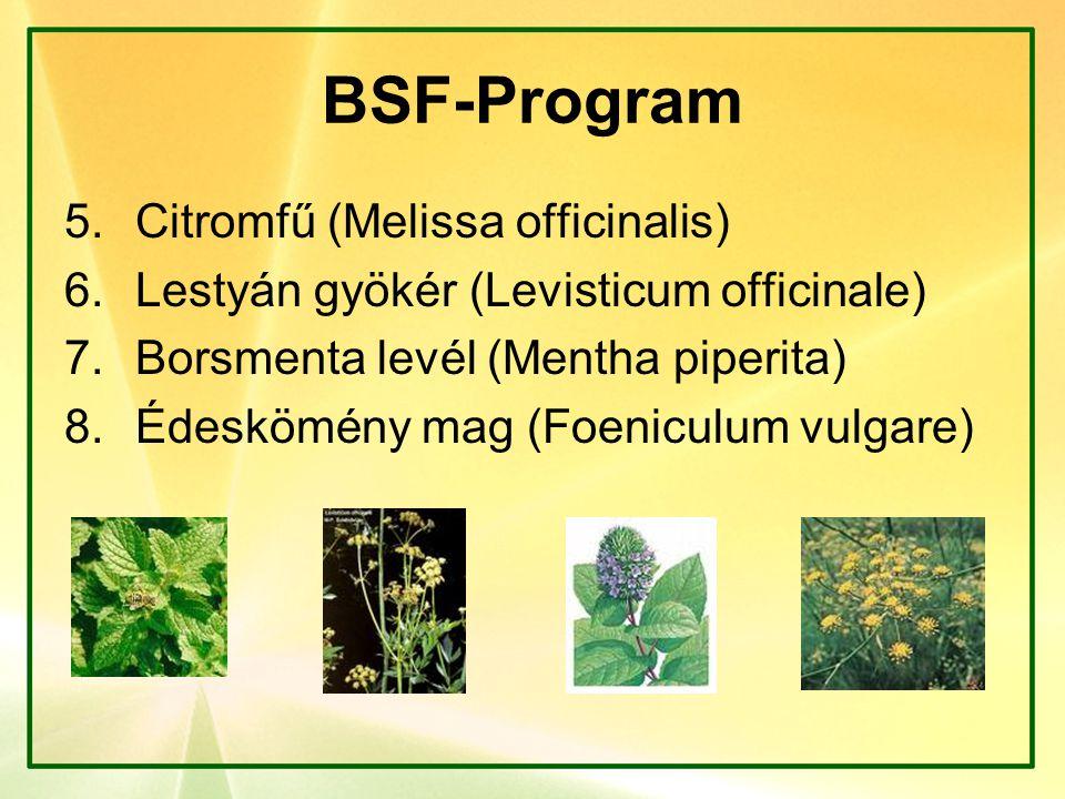 BSF-Program 5.Citromfű (Melissa officinalis) 6.Lestyán gyökér (Levisticum officinale) 7.Borsmenta levél (Mentha piperita) 8.Édeskömény mag (Foeniculum