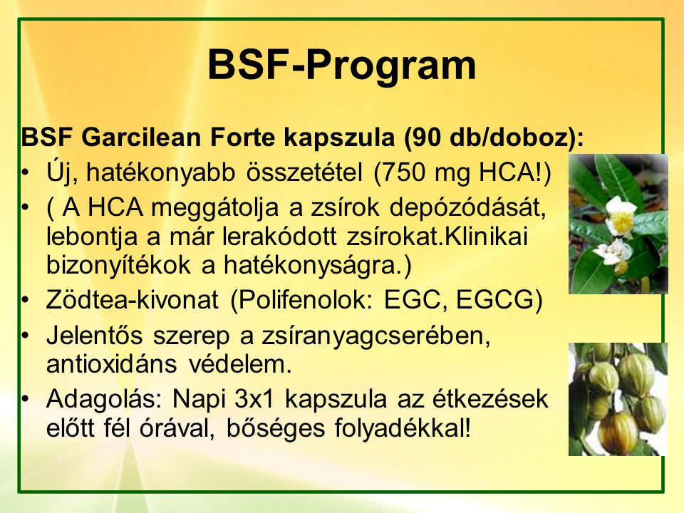 BSF-Program BSF Garcilean Forte kapszula (90 db/doboz): Új, hatékonyabb összetétel (750 mg HCA!) ( A HCA meggátolja a zsírok depózódását, lebontja a m