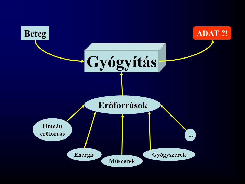 Gyógyítás Erőforrások Beteg Humán erőforrás Energia Műszerek Gyógyszerek... ?? ADAT ?!