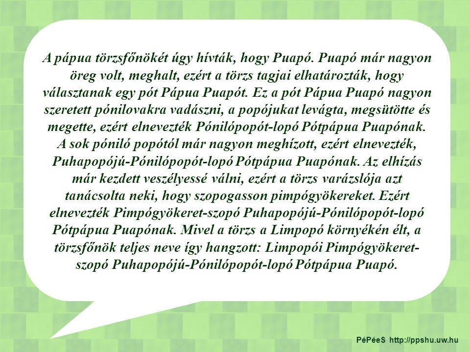 A pápua törzsfőnökét úgy hívták, hogy Puapó. Puapó már nagyon öreg volt, meghalt, ezért a törzs tagjai elhatározták, hogy választanak egy pót Pápua Pu