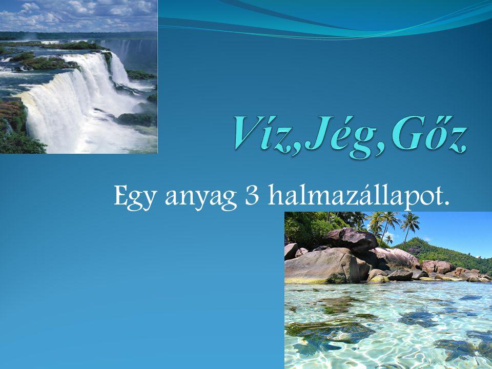Az életet adó víz A víz szinte az összes él ő lényének nélkülözhetetlen az élethez.