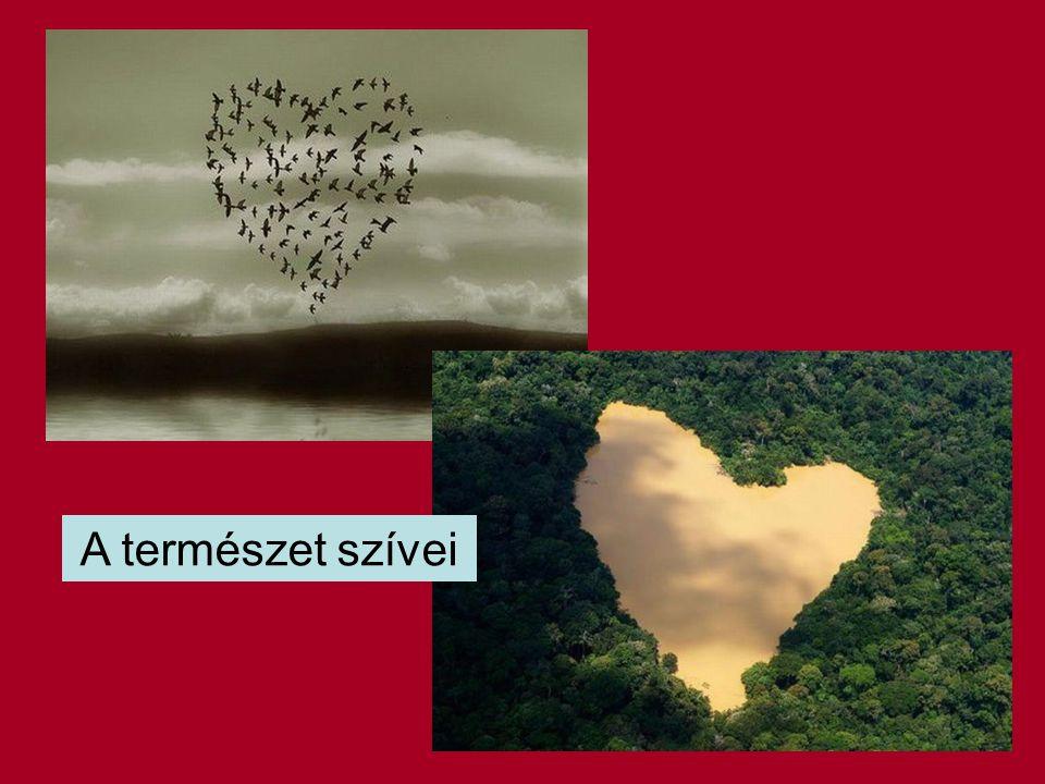 A természet szívei