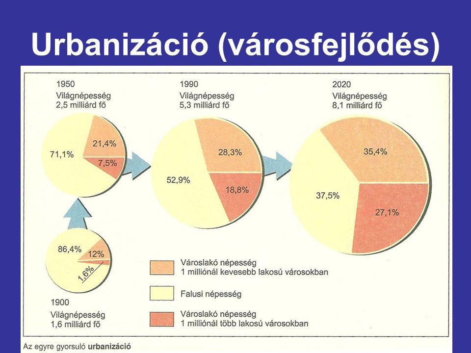 Az urbanizáció fogalma 1.Városodás: A városok számának és a városi népesség arányának növekedése 2.Városiasodás: A városi életforma terjedése, a város-falu közötti különbség csökkenése  A modern urbanizáció kezdete a 18.