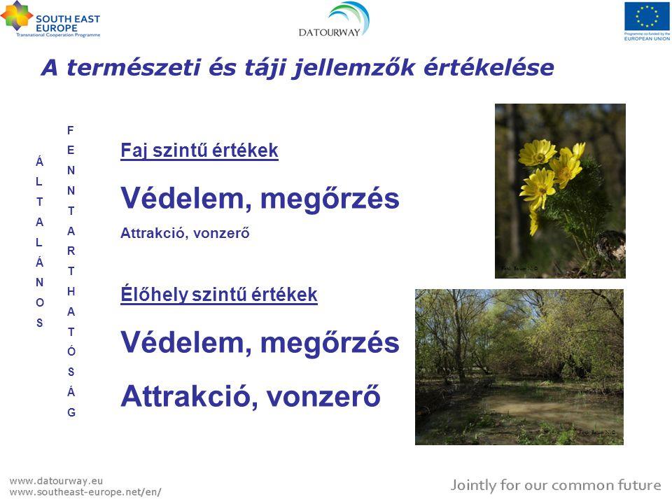 Diverz növény- és állatvilág Növény fajszám ~400 Védett növényfaj <20 Védett állatfaj >110 Ipoly-mente és Börzsöny - szélsőséges különbségek Növény fajszám ~1200 Védett növényfaj >110 Védett állatfaj >80 Fotó: Bauer N.