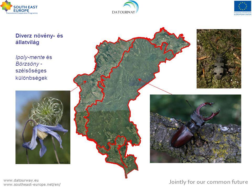 Diverz növény- és állatvilág Növény fajszám ~400 Védett növényfaj <20 Védett állatfaj >110 Ipoly-mente és Börzsöny - szélsőséges különbségek Növény fa