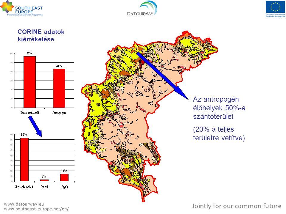 CORINE adatok kiértékelése Az antropogén élőhelyek 50%-a szántóterület (20% a teljes területre vetítve)