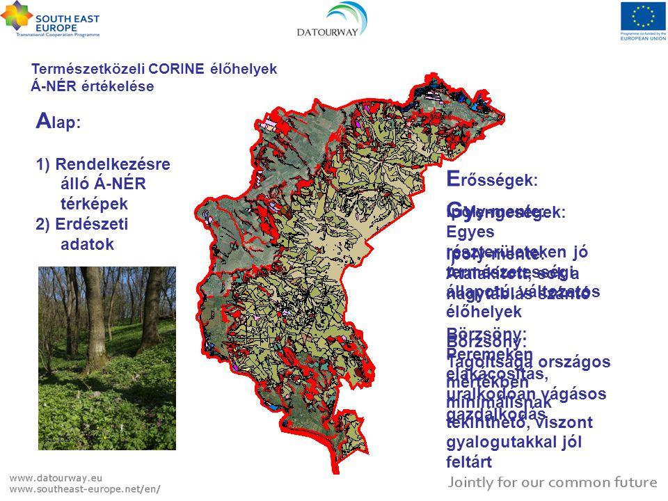 Természetközeli CORINE élőhelyek Á-NÉR értékelése A lap: 1) Rendelkezésre álló Á-NÉR térképek 2) Erdészeti adatok E rősségek: Ipoly-mente: Egyes részt