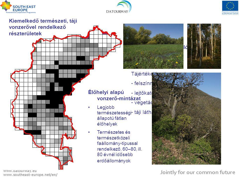 Kiemelkedő természeti, táji vonzerővel rendelkező részterületek Élőhelyi alapú vonzerő-mintázat Legjobb természetességi állapotú fátlan élőhelyek Term