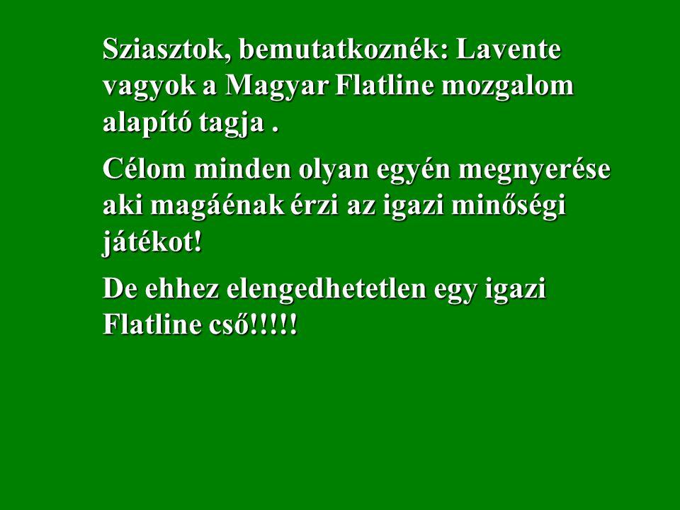 Sziasztok, bemutatkoznék: Lavente vagyok a Magyar Flatline mozgalom alapító tagja.