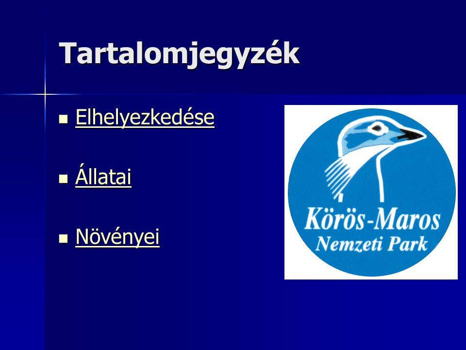 Elhelyezkedés Az 1997-ben alapított Körös–Maros Nemzeti Park a dél- alföld valósítja meg.