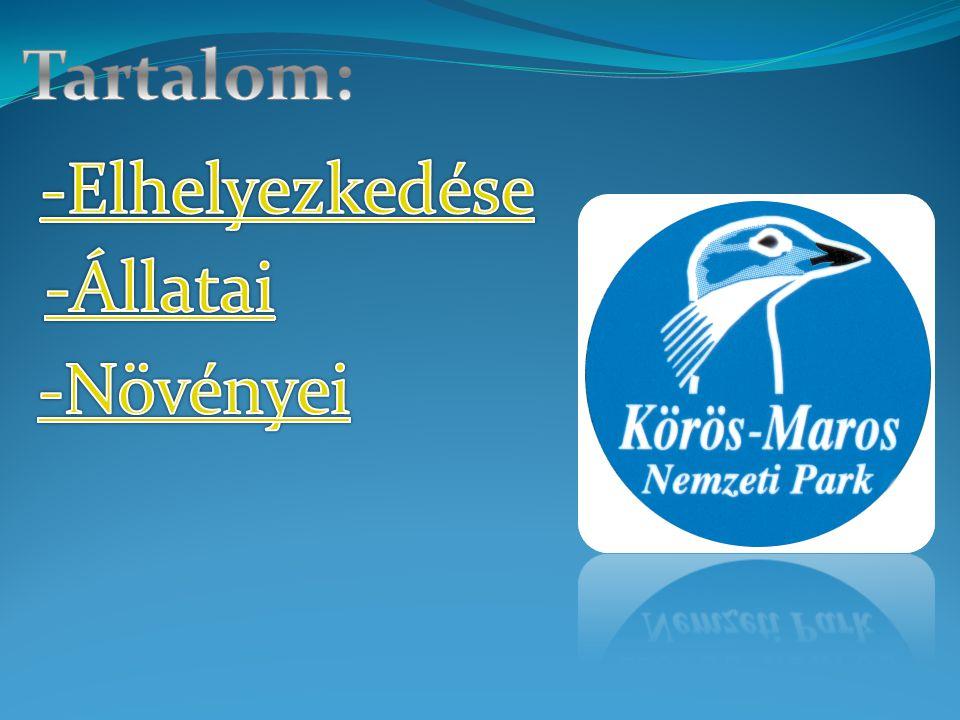 Az 1997-ben alapított Körös–Maros Nemzeti Park a dél-alföldi területek egységes természetvédelmi kezelésének feladatát valósítja meg.