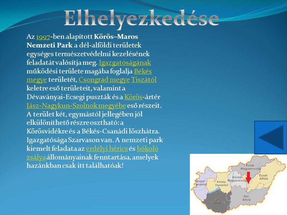 Az 1997-ben alapított Körös–Maros Nemzeti Park a dél-alföldi területek egységes természetvédelmi kezelésének feladatát valósítja meg. Igazgatóságának