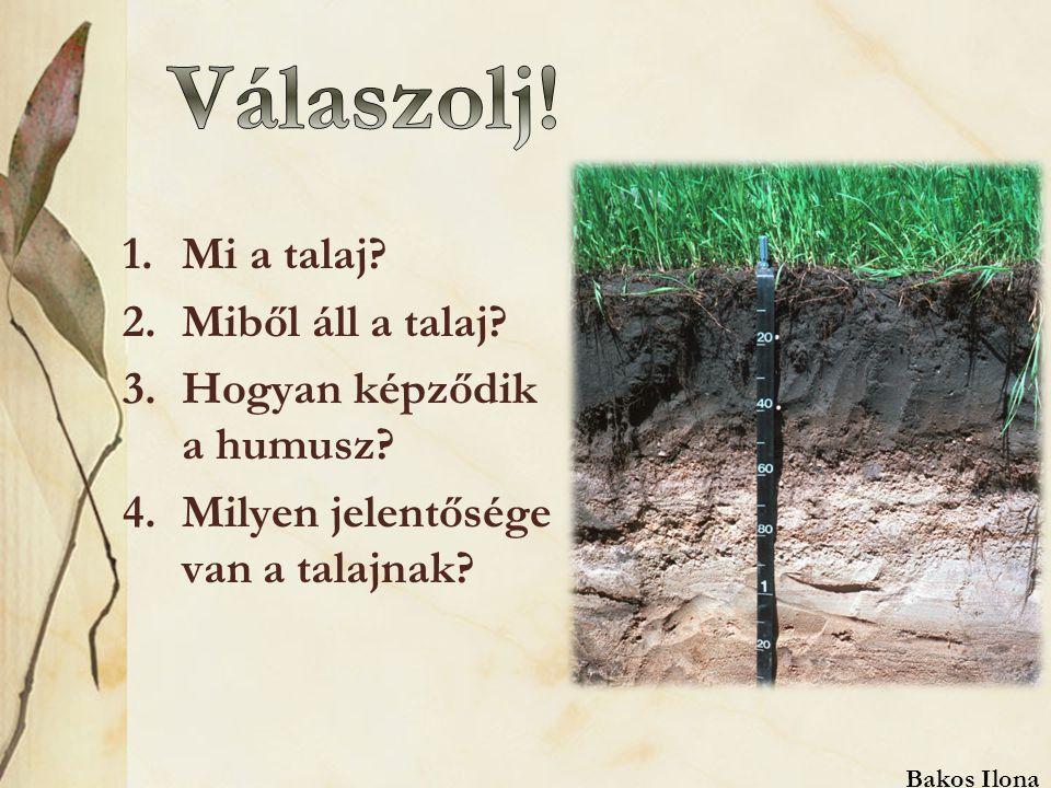 1.Mi a talaj.2.Miből áll a talaj. 3.Hogyan képződik a humusz.