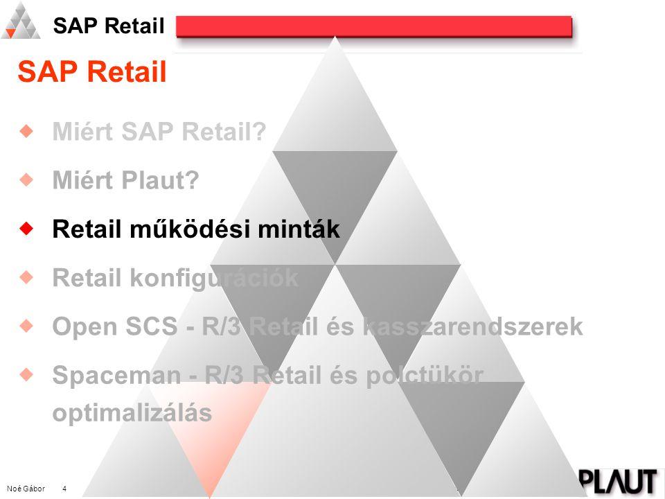 Noé Gábor 5 PLAUT International Management Consulting SAP Retail Központi koordináció Központi értékesítés Központi diszpozicióTermék listázásKondiciós megállapodásokAkciótervezésSzortiment kialakításKalkuláció Központi beszerzés Szállító listázás