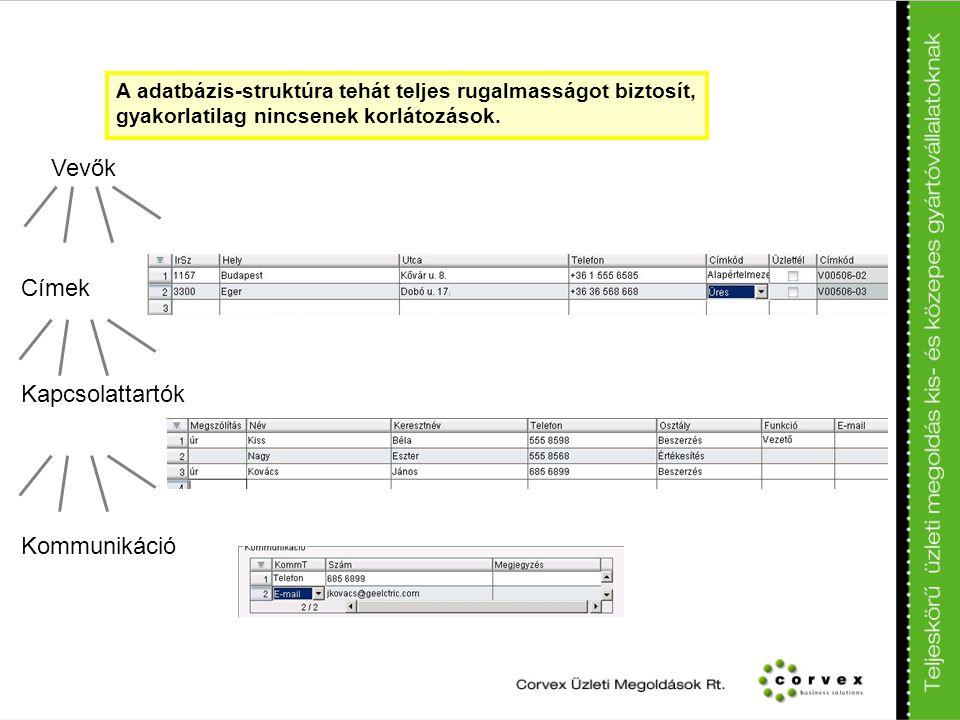 A adatbázis-struktúra tehát teljes rugalmasságot biztosít, gyakorlatilag nincsenek korlátozások. Vevők Címek Kapcsolattartók Kommunikáció