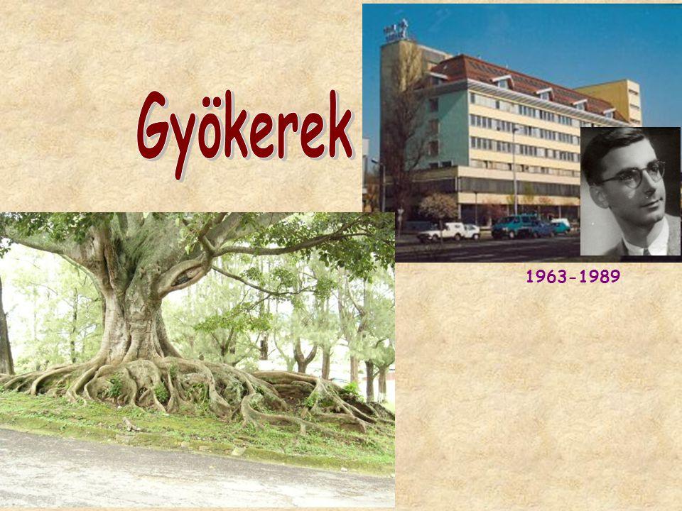 1963-1989