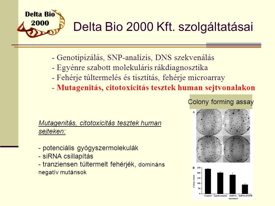 Delta Bio 2000 Kft. szolgáltatásai - Genotipizálás, SNP-analízis, DNS szekvenálás - Egyénre szabott molekuláris rákdiagnosztika - Fehérje túltermelés