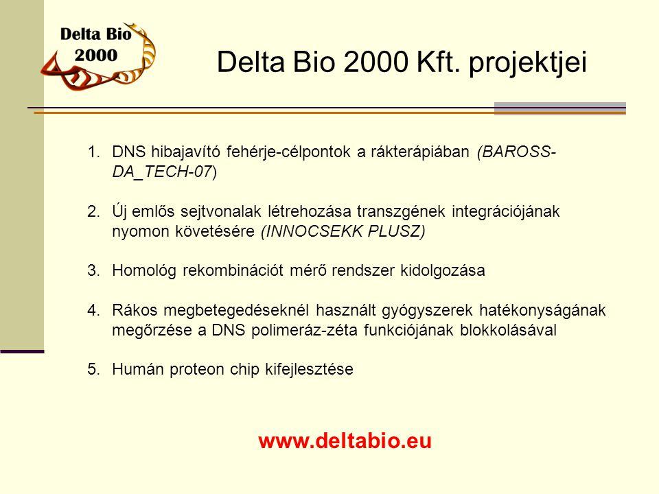 Delta Bio 2000 Kft. projektjei www.deltabio.eu 1.DNS hibajavító fehérje-célpontok a rákterápiában (BAROSS- DA_TECH-07) 2.Új emlős sejtvonalak létrehoz