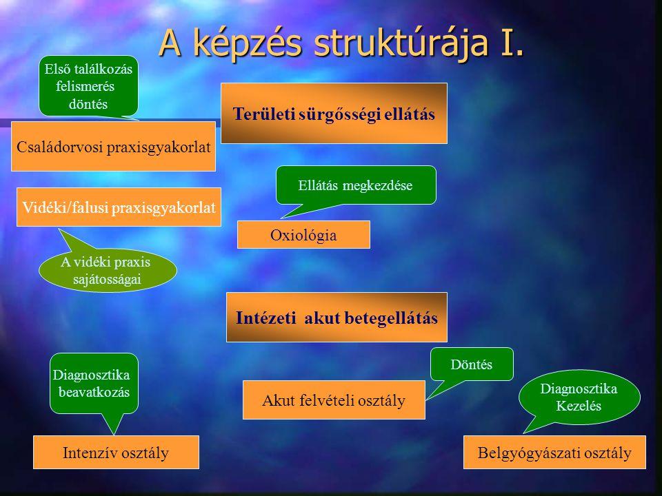 A képzés struktúrája I. Családorvosi praxisgyakorlat Oxiológia Intézeti akut betegellátás Akut felvételi osztály Intenzív osztályBelgyógyászati osztál