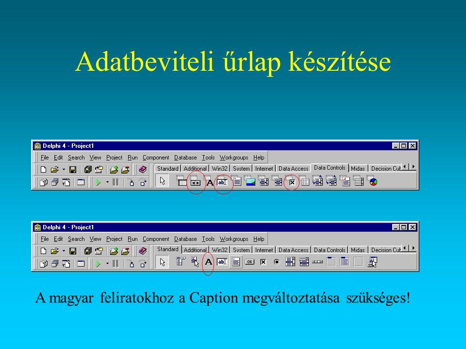 Adatbeviteli űrlap készítése A magyar feliratokhoz a Caption megváltoztatása szükséges!