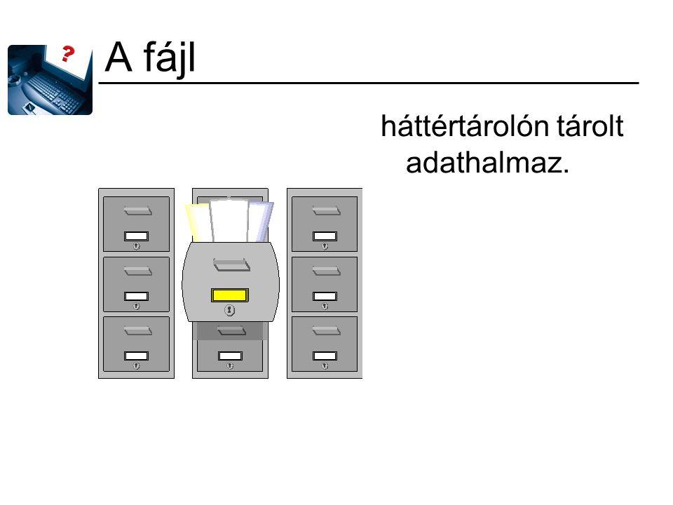 A fájl háttértárolón tárolt adathalmaz.