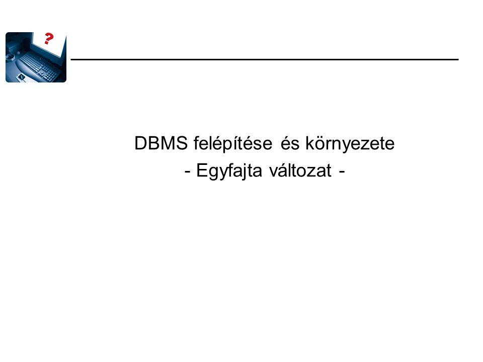 DBMS felépítése és környezete - Egyfajta változat -