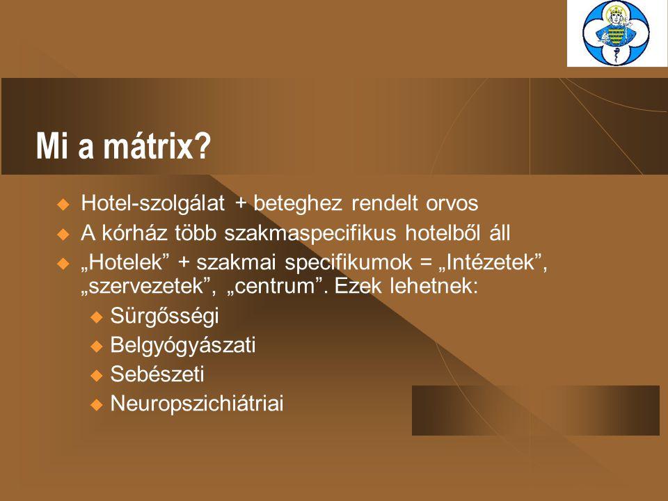 """Mi a mátrix?  Hotel-szolgálat + beteghez rendelt orvos  A kórház több szakmaspecifikus hotelből áll  """"Hotelek"""" + szakmai specifikumok = """"Intézetek"""""""