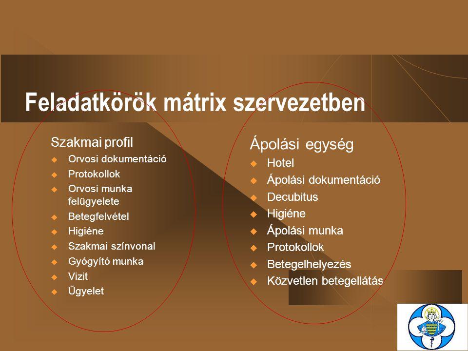Feladatkörök mátrix szervezetben Szakmai profil  Orvosi dokumentáció  Protokollok  Orvosi munka felügyelete  Betegfelvétel  Higiéne  Szakmai szí