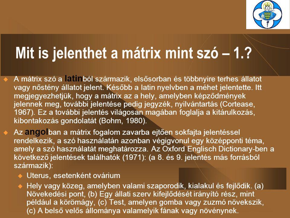 Mit is jelenthet a mátrix mint szó – 2..
