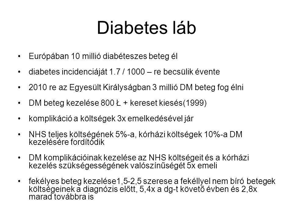 Diabetes láb Európában 10 millió diabéteszes beteg él diabetes incidenciáját 1.7 / 1000 – re becsülik évente 2010 re az Egyesült Királyságban 3 millió DM beteg fog élni DM beteg kezelése 800 Ł + kereset kiesés(1999) komplikáció a költségek 3x emelkedésével jár NHS teljes költségének 5%-a, kórházi költségek 10%-a DM kezelésére fordítódik DM komplikációinak kezelése az NHS költségeit és a kórházi kezelés szükségességének valószínűségét 5x emeli fekélyes beteg kezelése1,5-2,5 szerese a fekéllyel nem bíró betegek költségeinek a diagnózis előtt, 5,4x a dg-t követő évben és 2,8x marad továbbra is