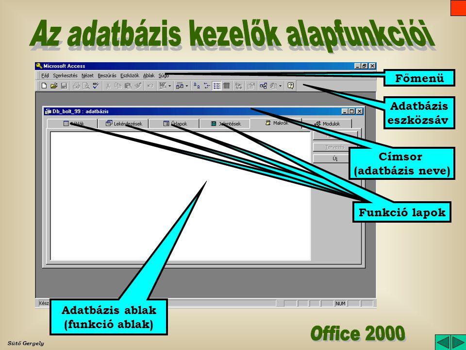 Adatbázis ablak (funkció ablak) Funkció lapok Címsor (adatbázis neve) Főmenü Adatbázis eszközsáv
