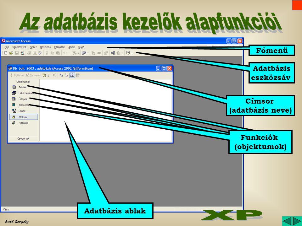 Sütő Gergely Adatbázis ablak (funkció ablak) Funkció lapok Címsor (adatbázis neve) Főmenü Adatbázis eszközsáv