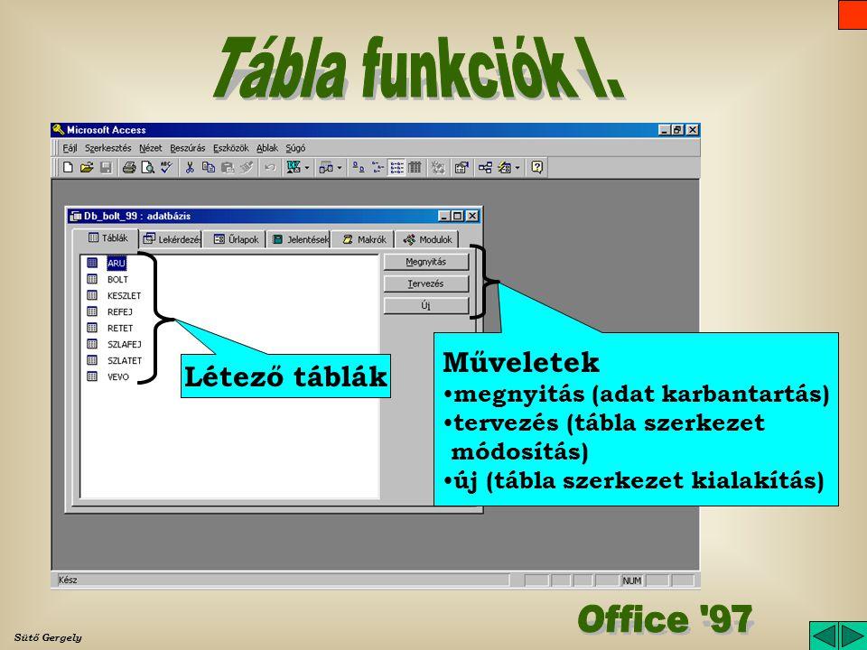 Sütő Gergely Adatbázis ablak Funkció lapok Funkciók (objektumok) Címsor (adatbázis neve) Főmenü Adatbázis eszközsáv
