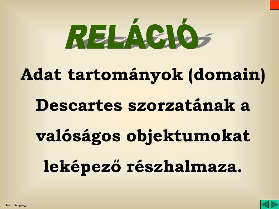 A reláció matematikai leírása: R<d 1, d 2, d 3,... d i,... dn>dn> A reláció tehát egy n dimenziós térben elhelyezkedő pontok halmaza. Minden pont egy