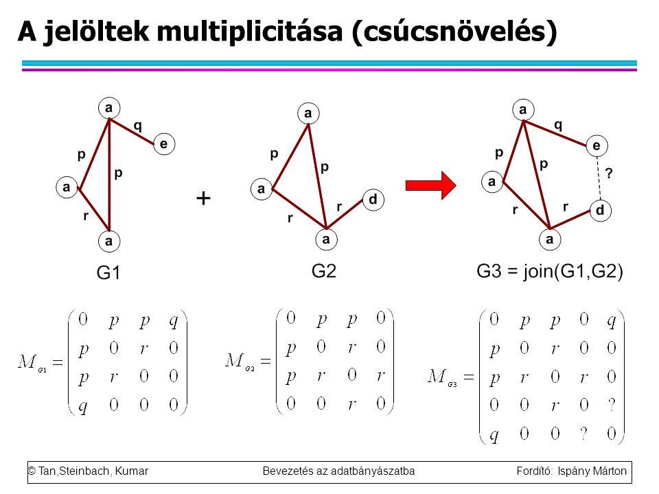 © Tan,Steinbach, Kumar Bevezetés az adatbányászatba Fordító: Ispány Márton A jelöltek multiplicitása (csúcsnövelés)
