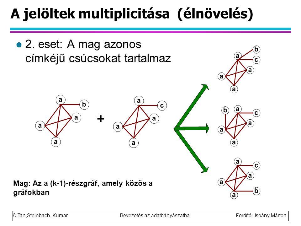 © Tan,Steinbach, Kumar Bevezetés az adatbányászatba Fordító: Ispány Márton A jelöltek multiplicitása (élnövelés) l 2.