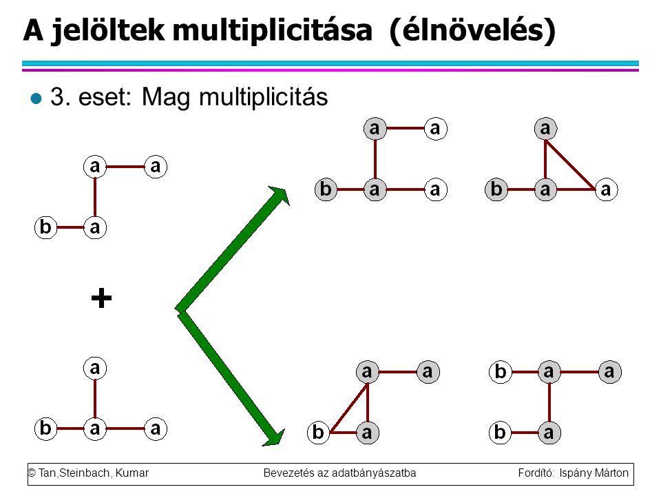 © Tan,Steinbach, Kumar Bevezetés az adatbányászatba Fordító: Ispány Márton A jelöltek multiplicitása (élnövelés) l 3.