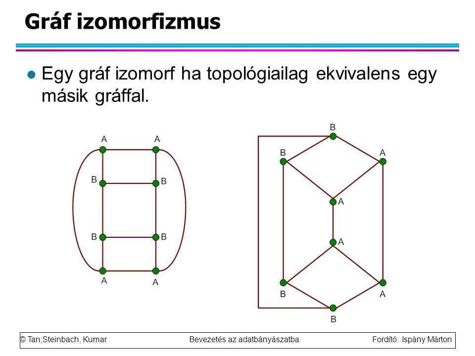 © Tan,Steinbach, Kumar Bevezetés az adatbányászatba Fordító: Ispány Márton Gráf izomorfizmus l Egy gráf izomorf ha topológiailag ekvivalens egy másik gráffal.